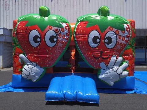 strawberry_ballpool03.jpg